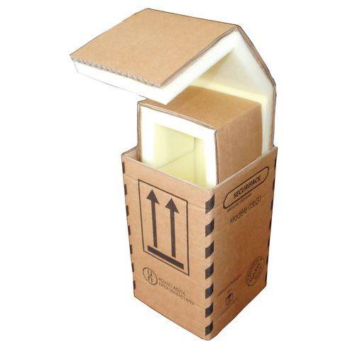 Caixa de expedição em cartão Sécuripack - Interior em espuma