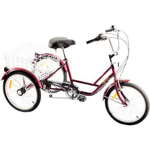 Triciclo - Capacidade de carga de 45kg
