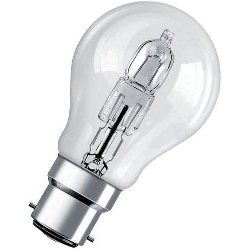 Lâmpada halogéneo - Éco Pro Classic B22